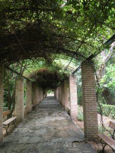 国立公園内の秘密の(?)トンネル
